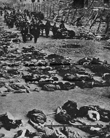 Deutsche Zivilisten müssen die Toten begraben. Ein Ausschnitt aus dem Leichenfeld. KZ NAZI